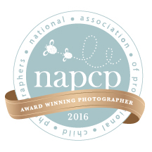NAPCP-Award-Winning-Photographer-Maui